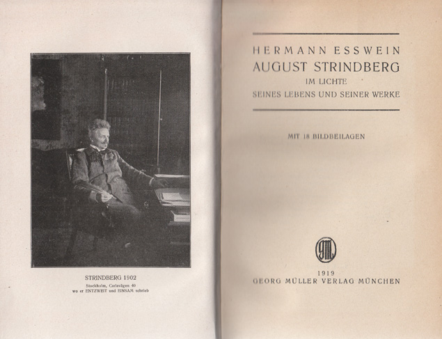 Hermann Esswein - August Strindberg.jpg